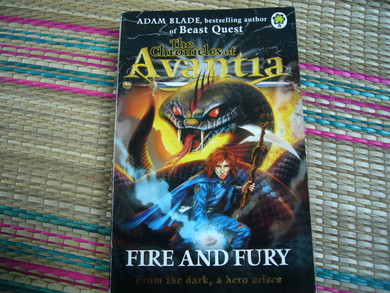 FIRE and FURY (The Chronicles of Avantia)