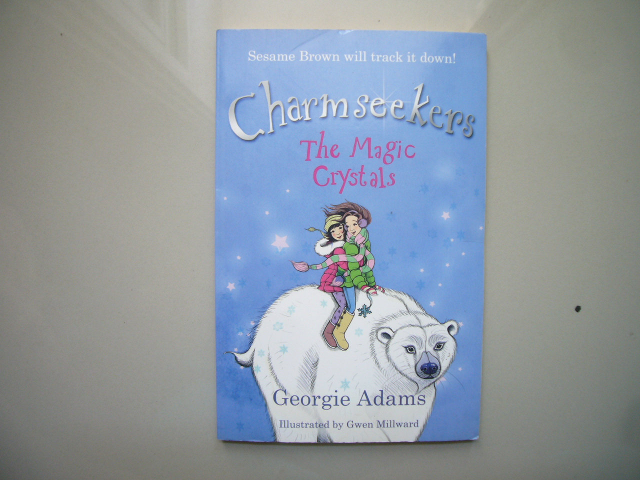 Charm Seekers 7: The Magic Crystals