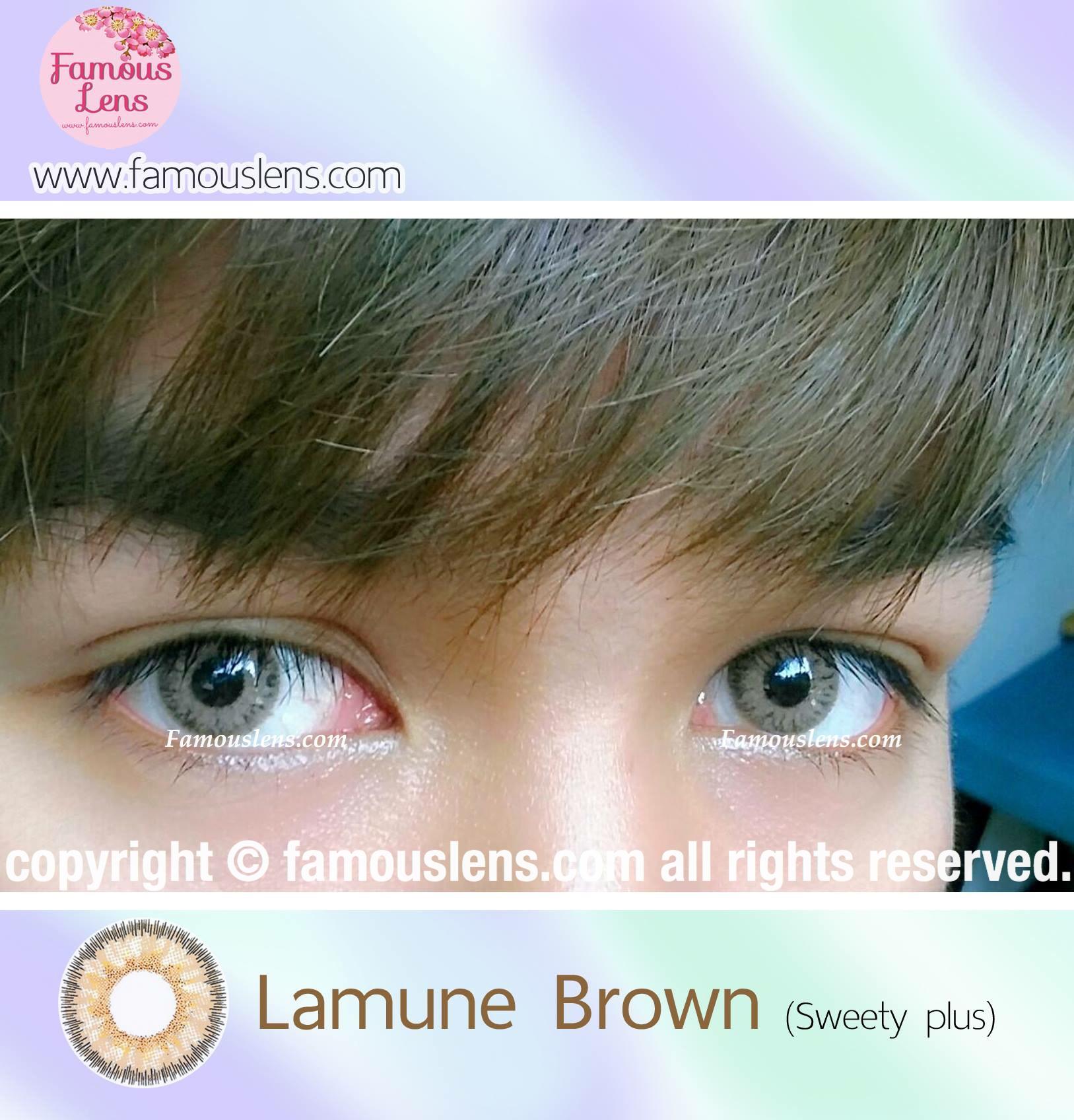 Florida Lamune Brown คอนแทคเลนส์สีน้ำตาล คอนแทคเลนส์ตาฝรั่ง