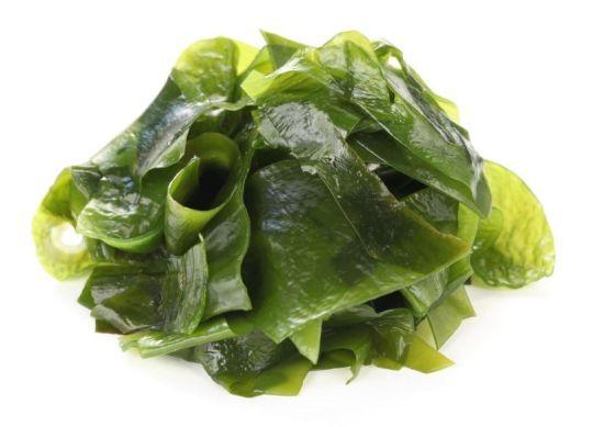 สารสกัดสาหร่าย (ใบ) (Seaweed extract)