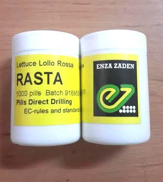 lettuce lollo rossa (RASTA) enza zaden 1000 pills 10 กป.(เคลือบ)